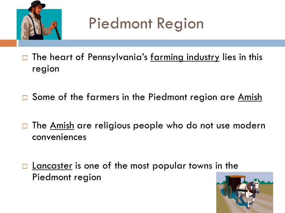 Piedmont Region The heart of Pennsylvania's farming industry lies in this region. Some of the farmers in the Piedmont region are Amish.