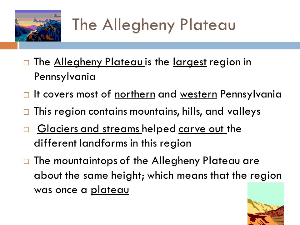 The Allegheny Plateau The Allegheny Plateau is the largest region in Pennsylvania. It covers most of northern and western Pennsylvania.