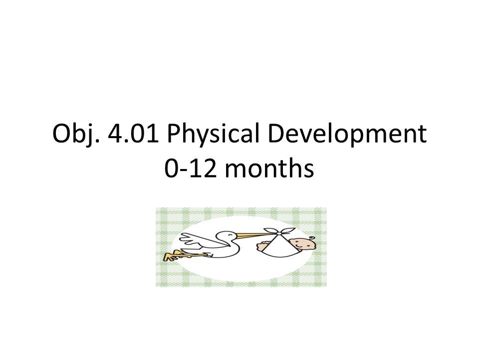 Obj. 4.01 Physical Development 0-12 months