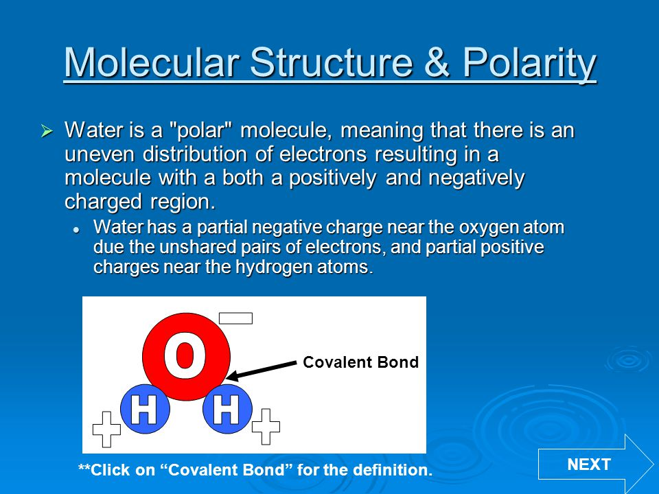 Molecular Structure & Polarity