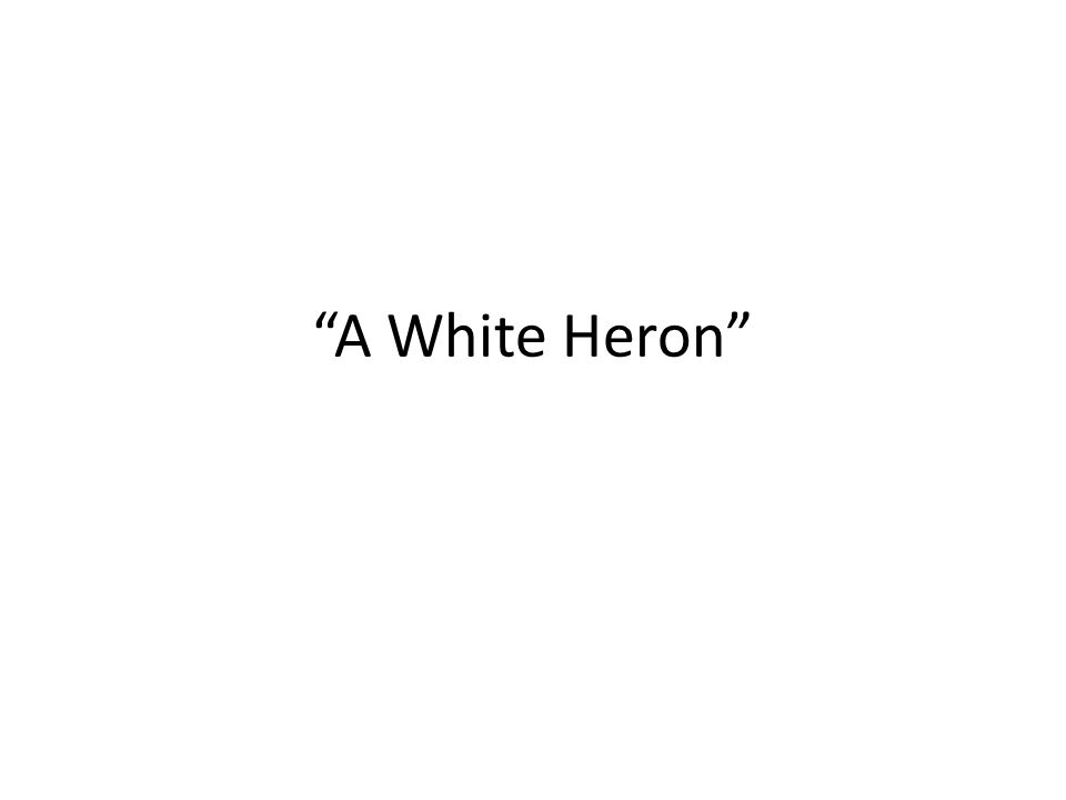 a white heron by sarah orne jewett essay In this excerpt, from a white heron, by sarah orne jewett, a number of literary techniques were used all of them contributing to the excerpt's excellent flow this essay will focus on three literary techniques jewett used  imagery, tone, and symbolism.