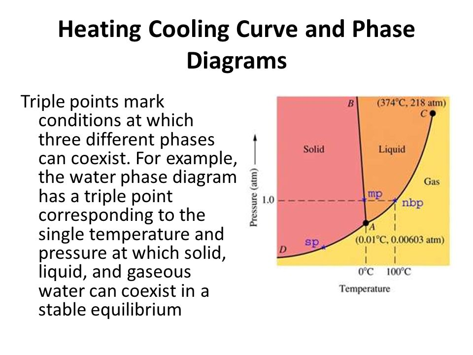 heating and cooling curve of water essay Write my essay frazier  worksheet phase change diagram worksheet answers heating cooling curve worksheet answers resume worksheets.