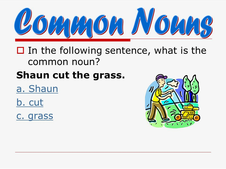 Common Nouns In the following sentence, what is the common noun