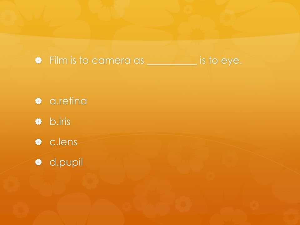 Film is to camera as __________ is to eye.