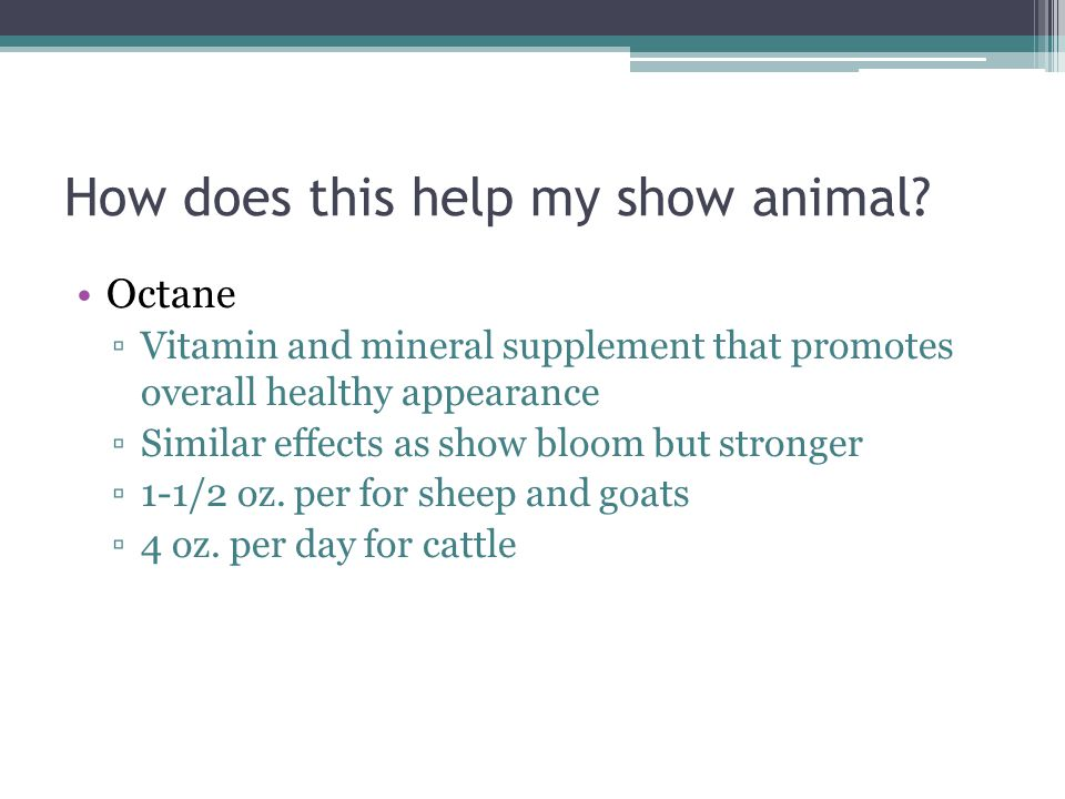 How does this help my show animal