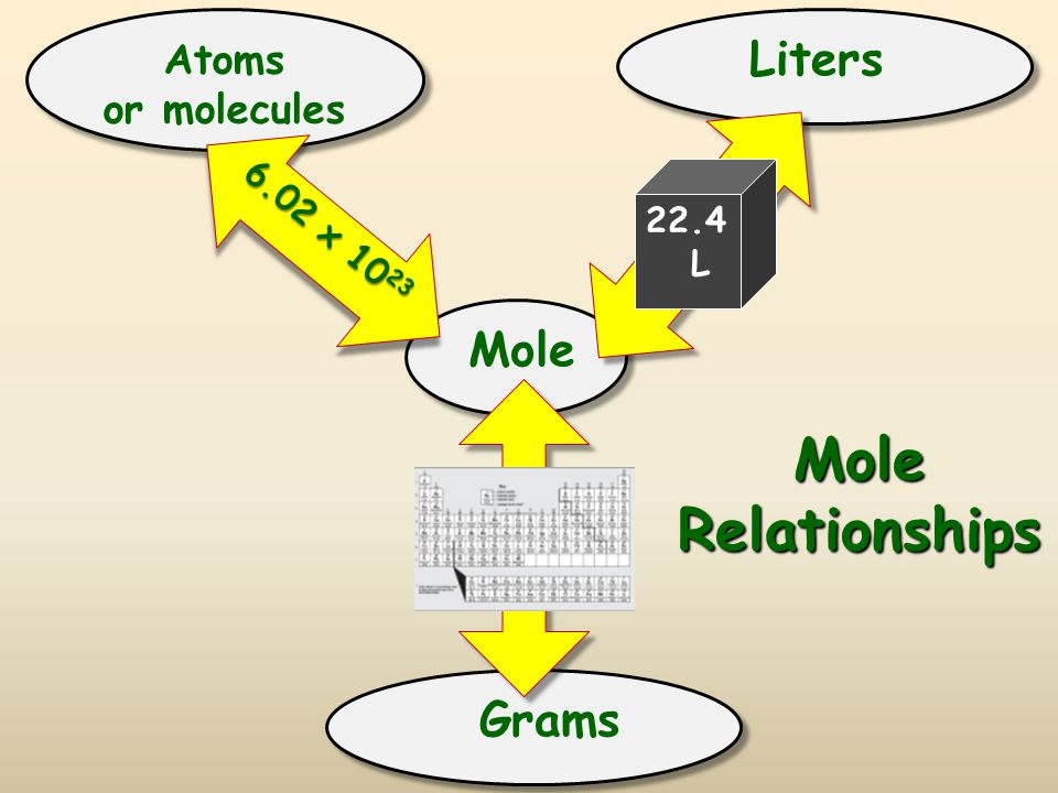 Mole Relationships Liters Mole Grams Atoms or molecules 6.02 x 1023