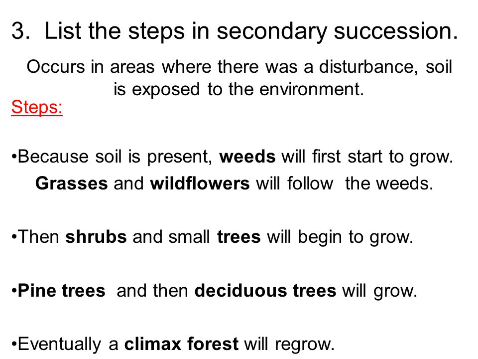 3. List the steps in secondary succession.