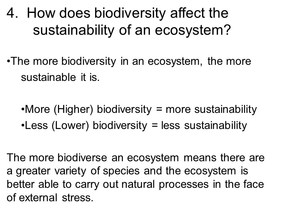 4. How does biodiversity affect the sustainability of an ecosystem