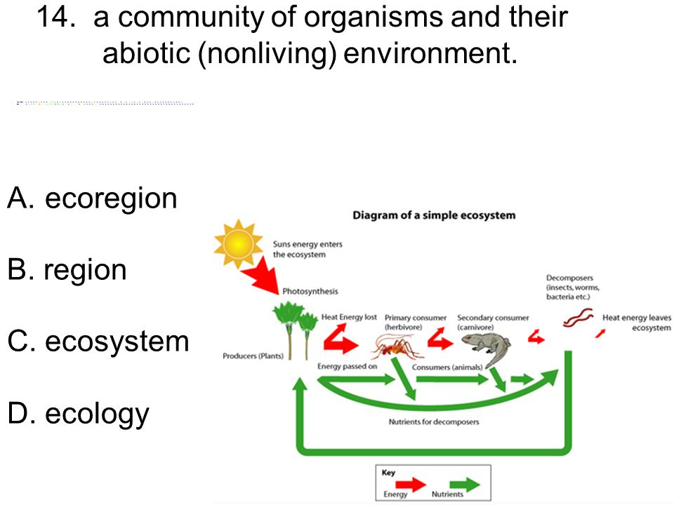 14. a community of organisms and their abiotic (nonliving) environment.