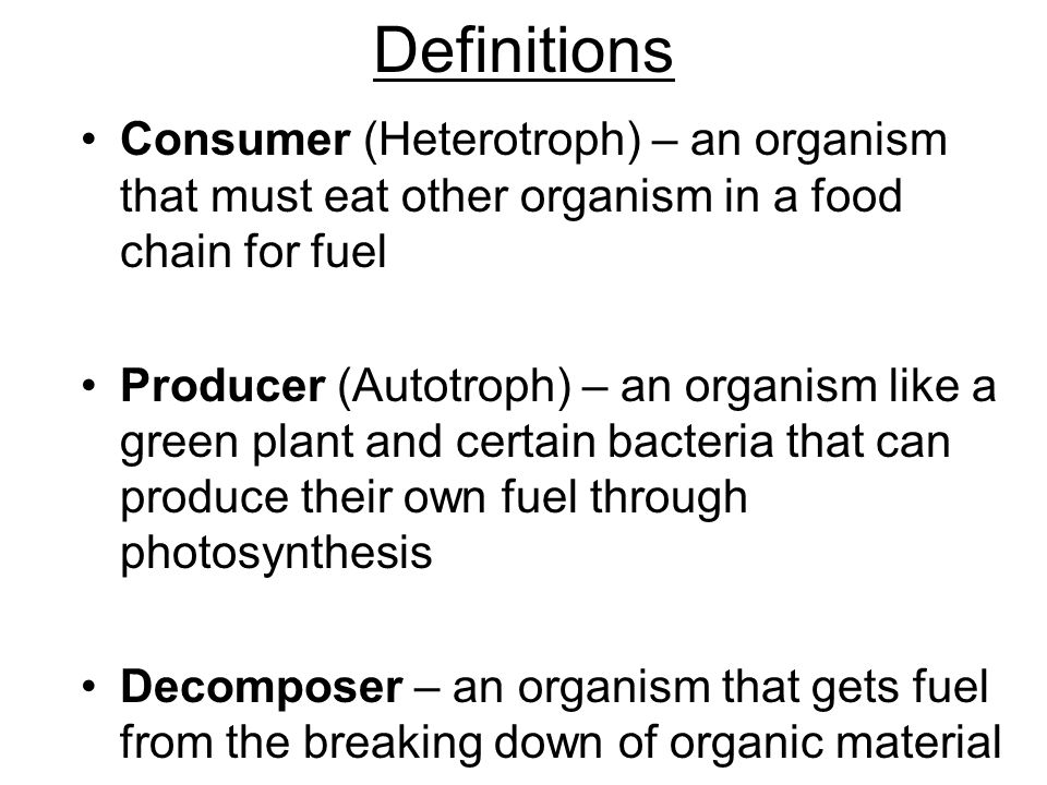 Definitions Consumer (Heterotroph) – an organism that must eat other organism in a food chain for fuel.