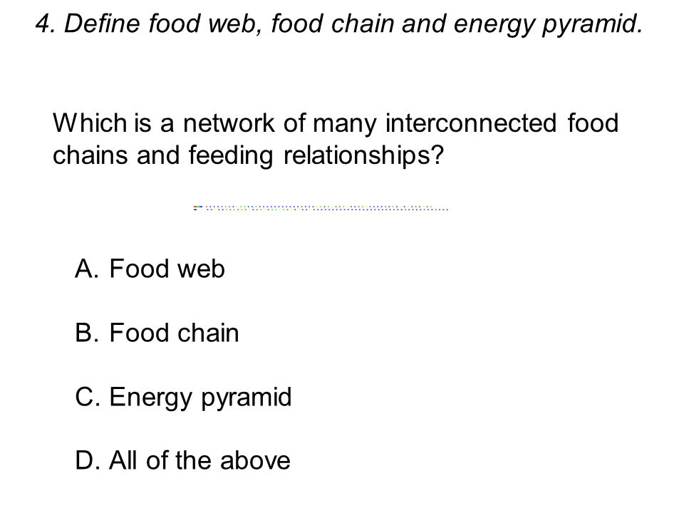 4. Define food web, food chain and energy pyramid.