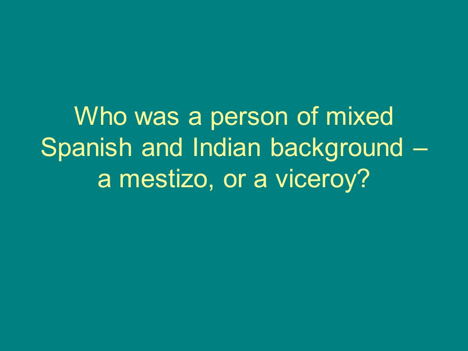 Who was a person of mixed Spanish and Indian background – a mestizo, or a viceroy