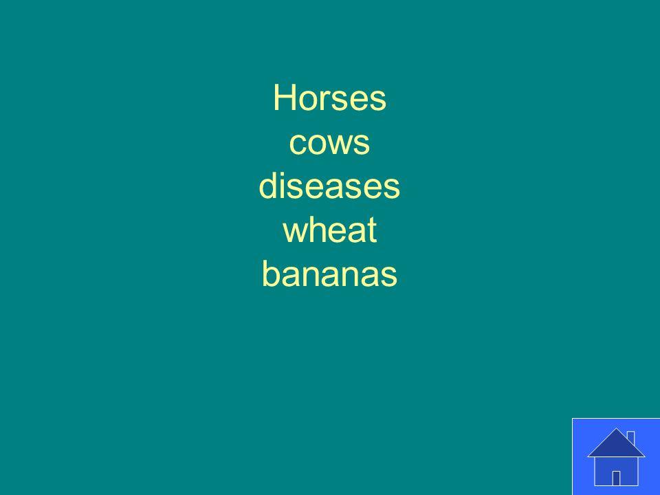 Horses cows diseases wheat bananas