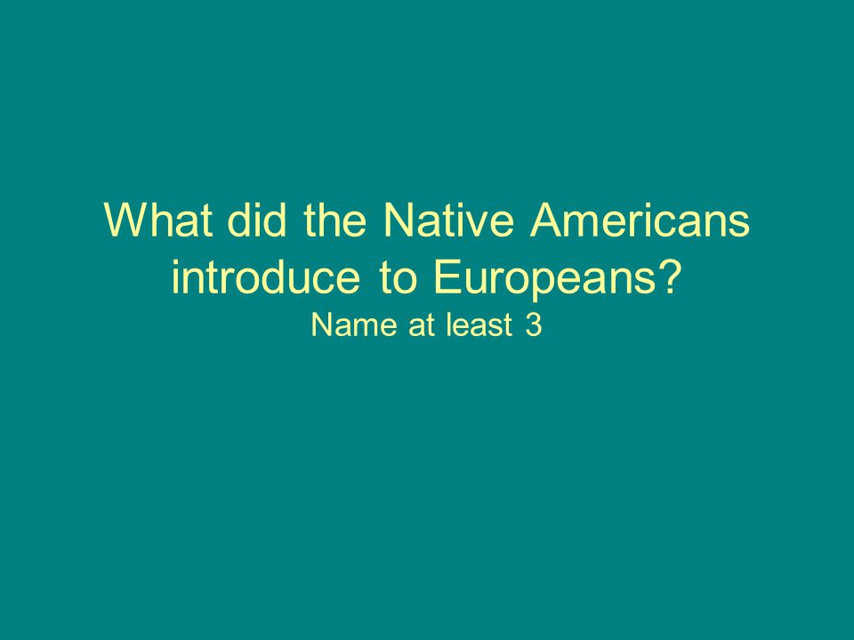 What did the Native Americans introduce to Europeans Name at least 3