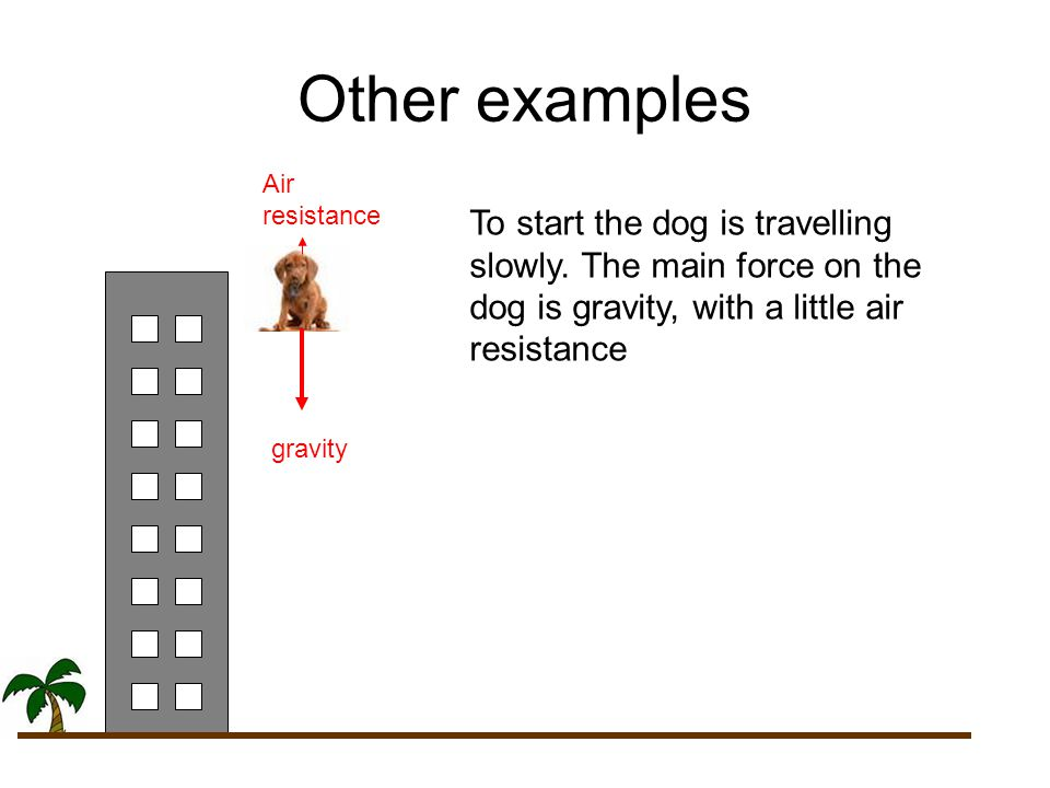 Other examples Air resistance. To start the dog is travelling slowly. The main force on the dog is gravity, with a little air resistance.