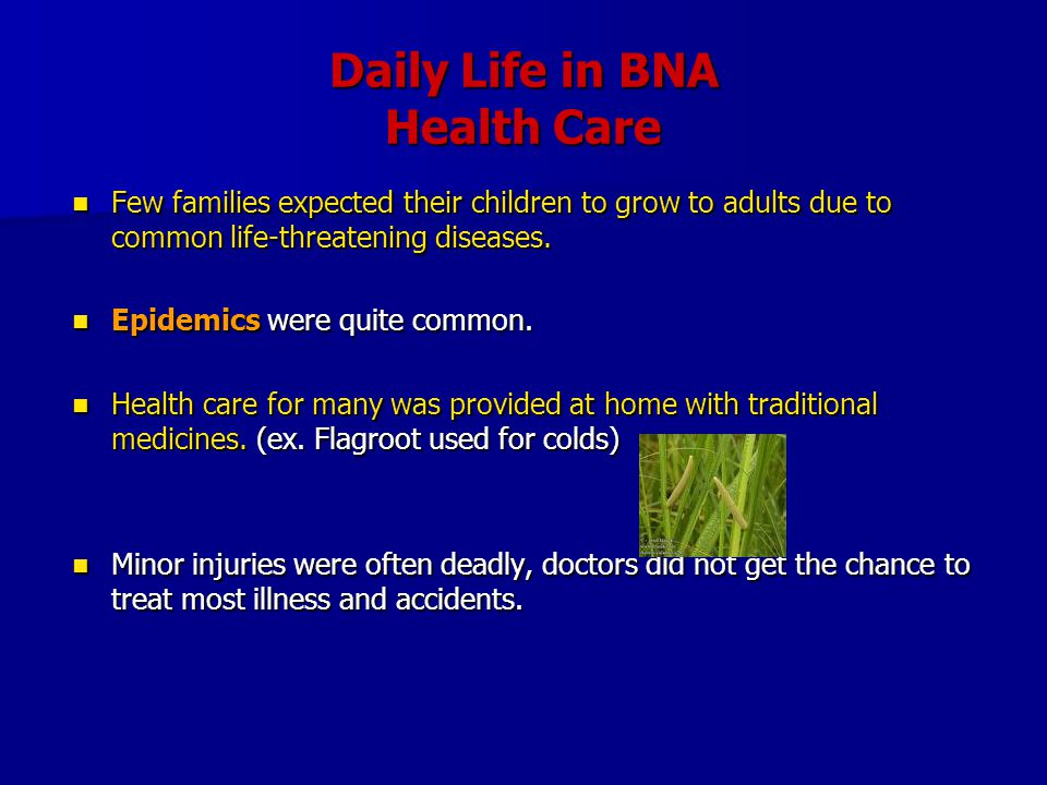 Daily Life in BNA Health Care