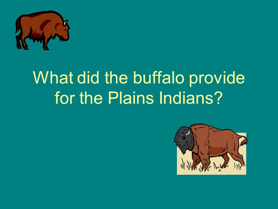 What did the buffalo provide for the Plains Indians