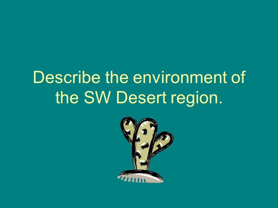 Describe the environment of the SW Desert region.