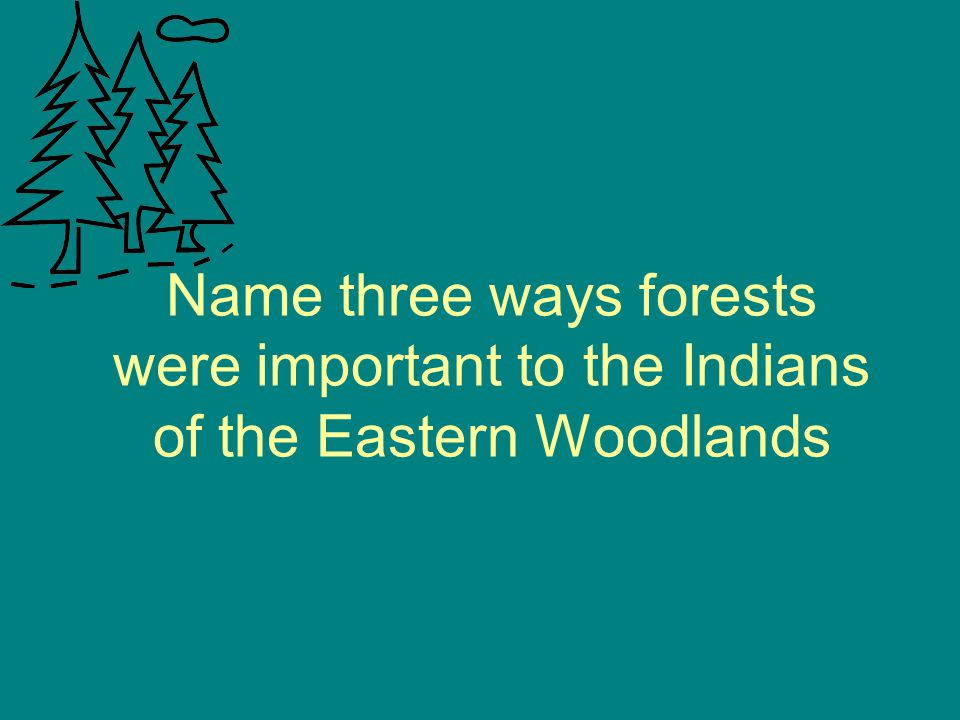 Name three ways forests were important to the Indians of the Eastern Woodlands
