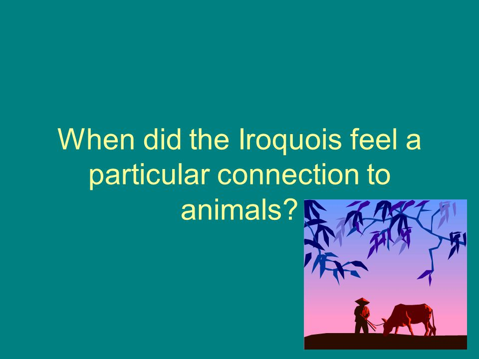When did the Iroquois feel a particular connection to animals