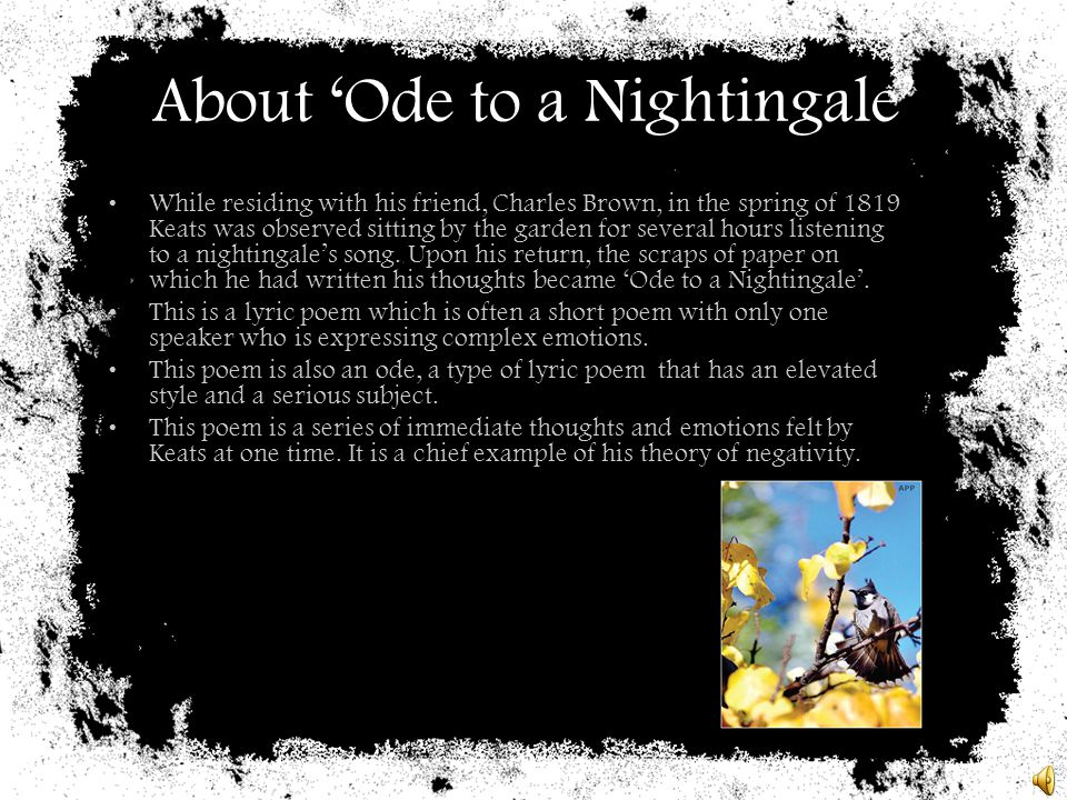 About 'Ode to a Nightingale'