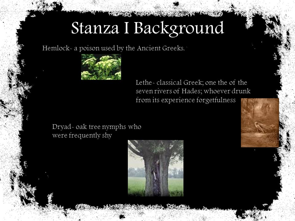 Stanza I Background Hemlock- a poison used by the Ancient Greeks.