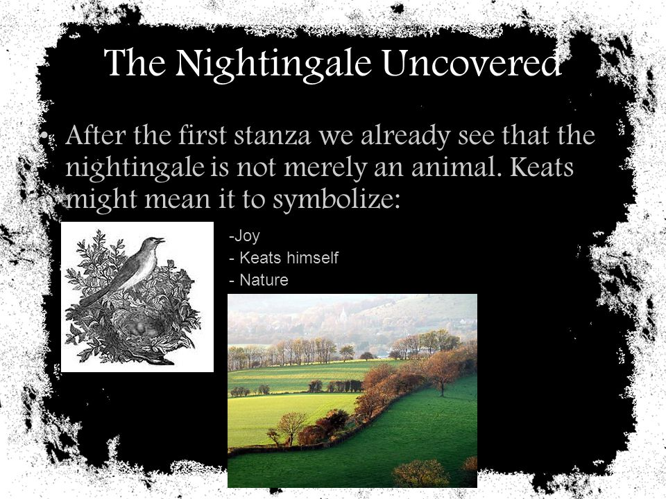 The Nightingale Uncovered