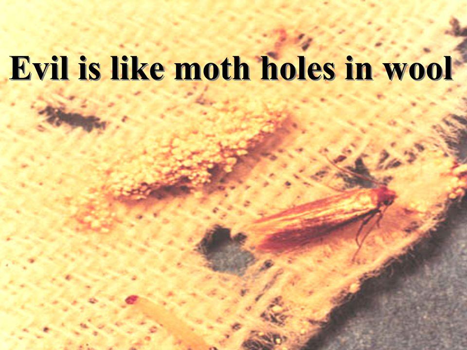 Evil is like moth holes in wool