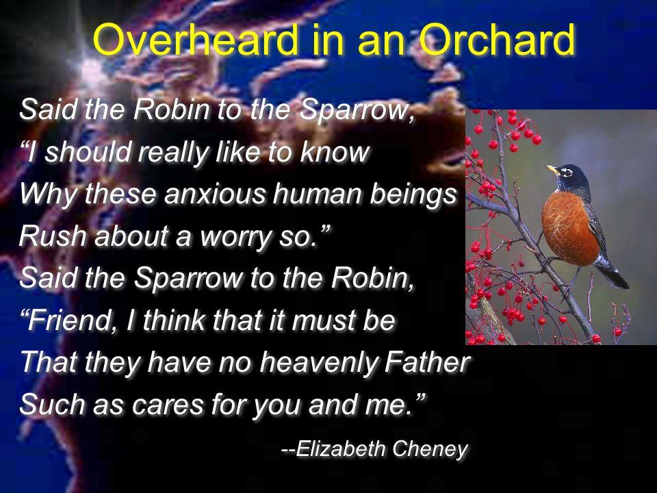 Overheard in an Orchard