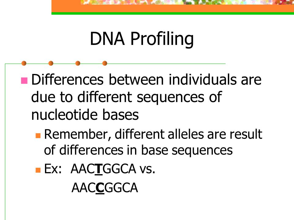 DNA Profiling Differences between individuals are due to different sequences of nucleotide bases.