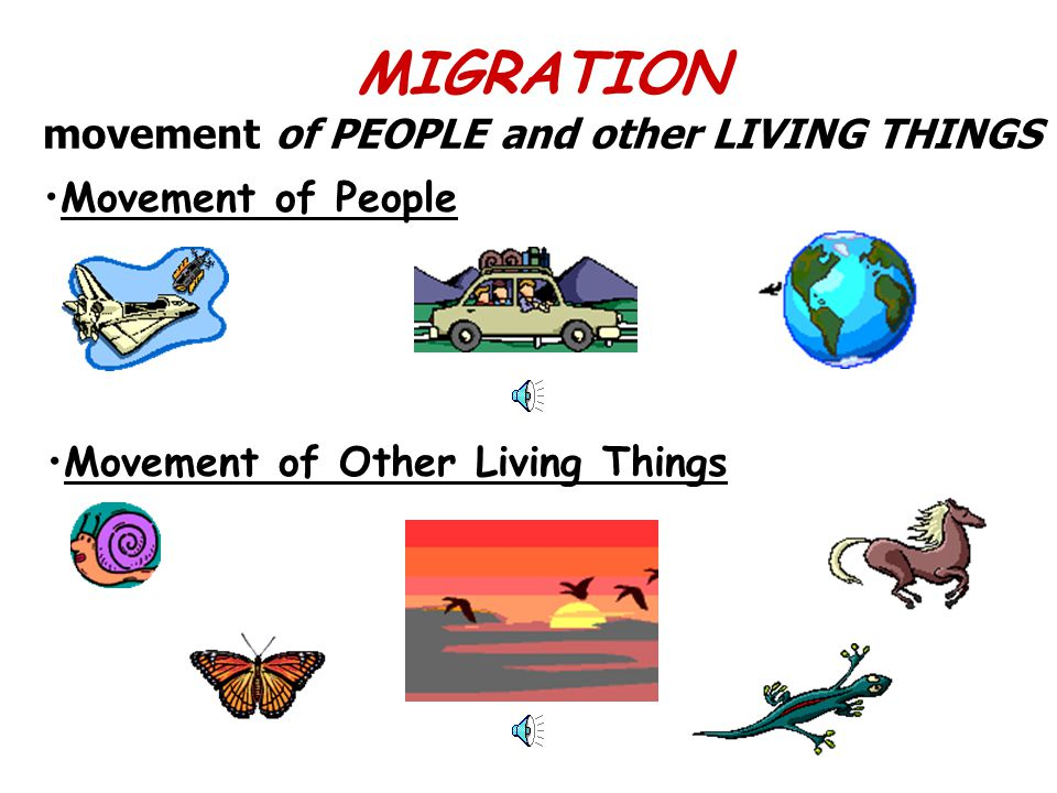 MIGRATION movement of PEOPLE and other LIVING THINGS