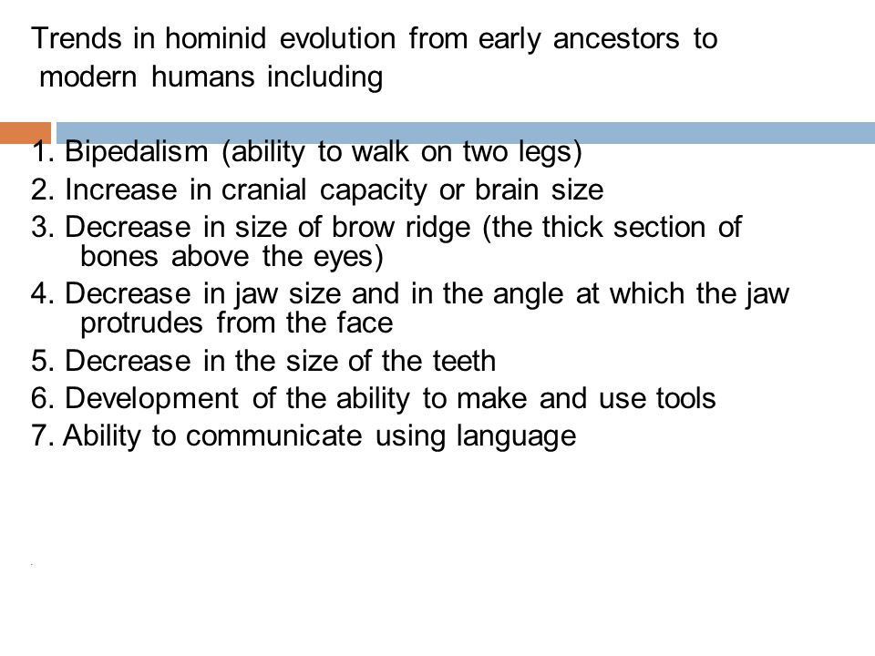 Trends in hominid evolution from early ancestors to