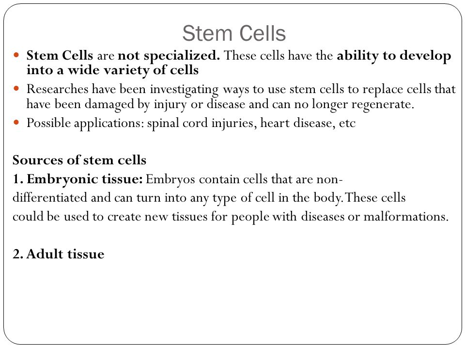 Stem Cells Stem Cells are not specialized. These cells have the ability to develop into a wide variety of cells.