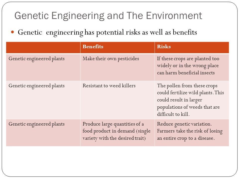 Genetic Engineering and The Environment