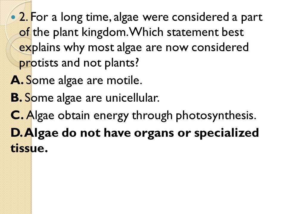 2. For a long time, algae were considered a part of the plant kingdom