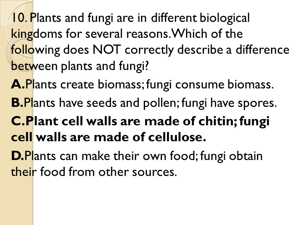 10. Plants and fungi are in different biological kingdoms for several reasons.