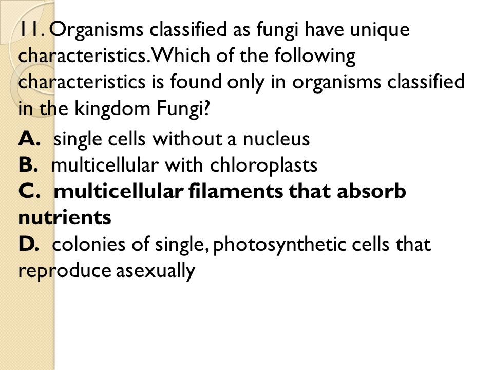 11. Organisms classified as fungi have unique characteristics