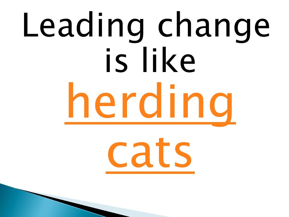 Leading change is like herding cats