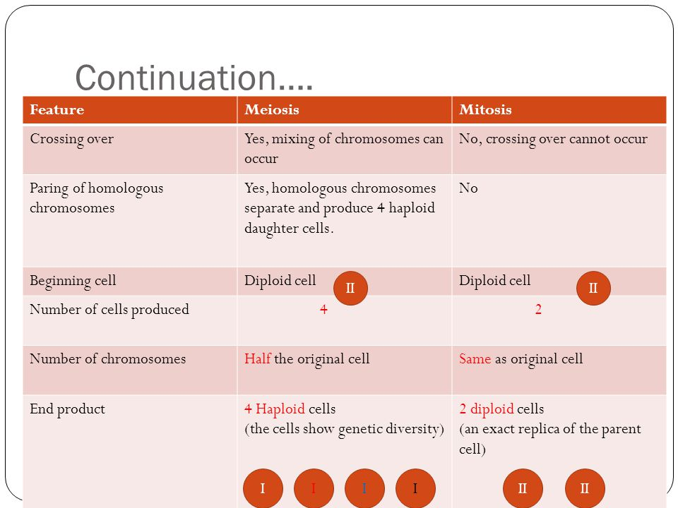 Continuation…. Feature Meiosis Mitosis Crossing over