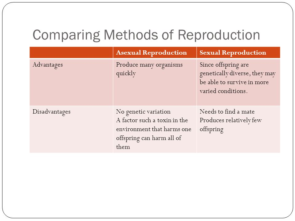 Comparing Methods of Reproduction