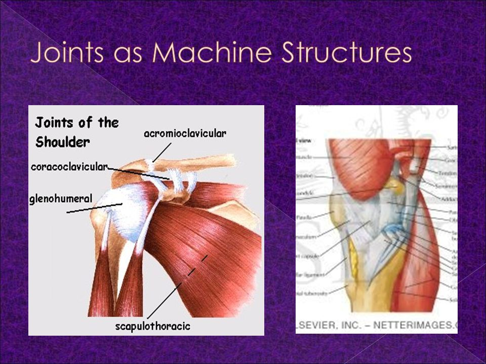 Joints as Machine Structures