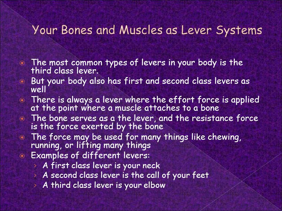 Your Bones and Muscles as Lever Systems