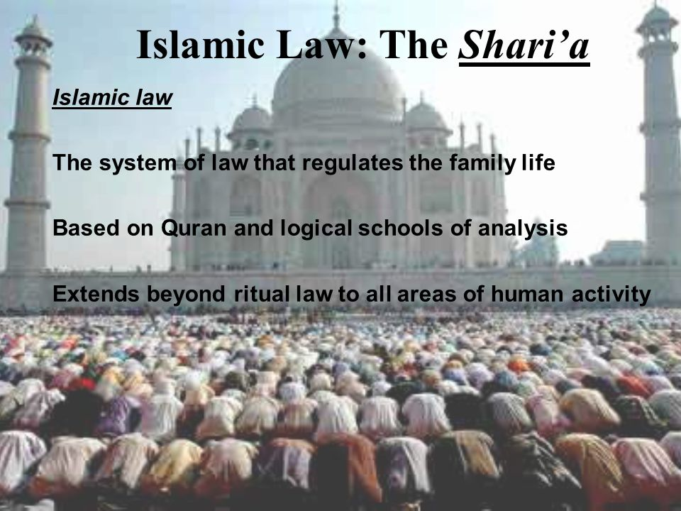 Islamic Law: The Shari'a