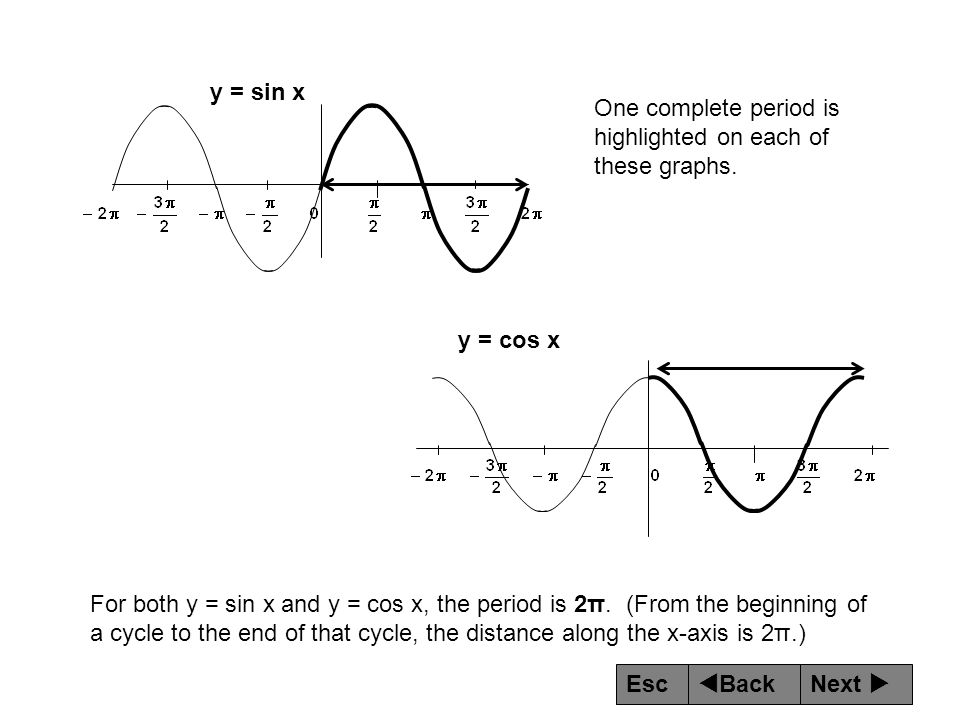 y = sin x One complete period is highlighted on each of these graphs. y = cos x.
