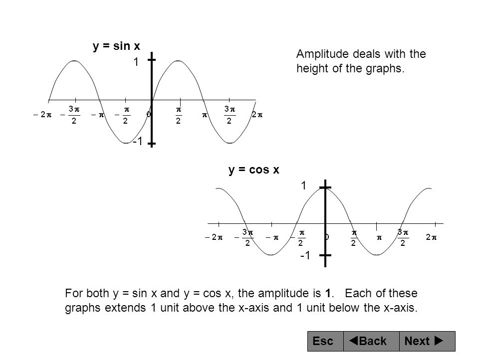 y = sin x Amplitude deals with the height of the graphs. 1. -1. y = cos x. 1. -1.