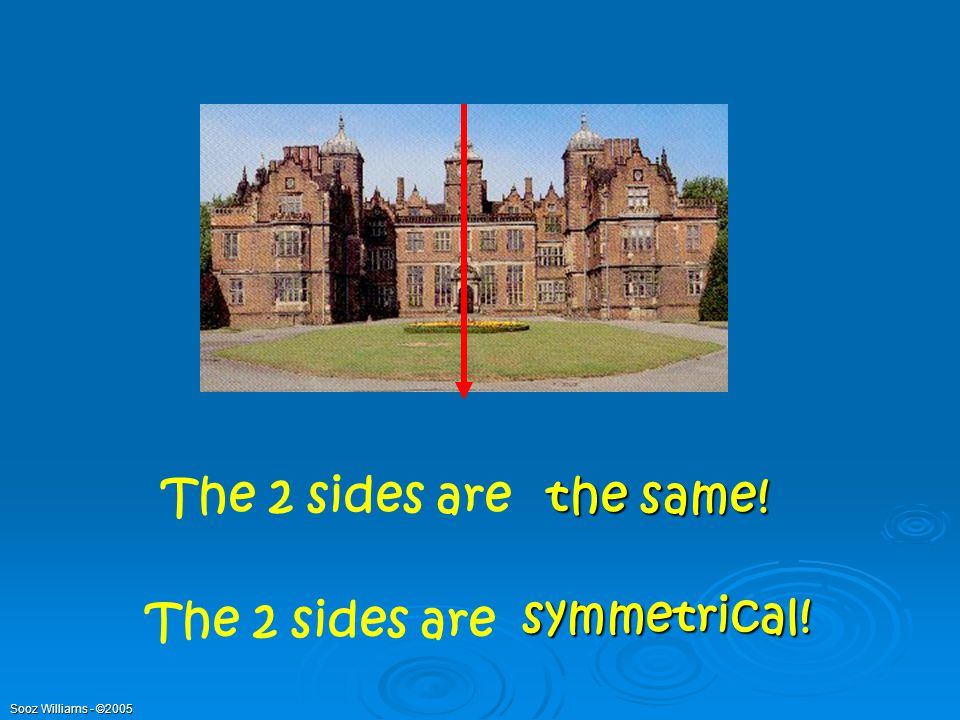 The 2 sides are the same! The 2 sides are symmetrical!
