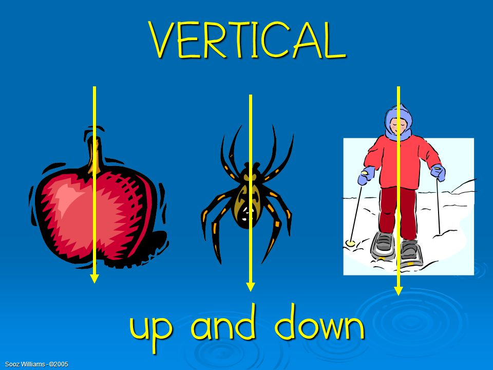 VERTICAL up and down