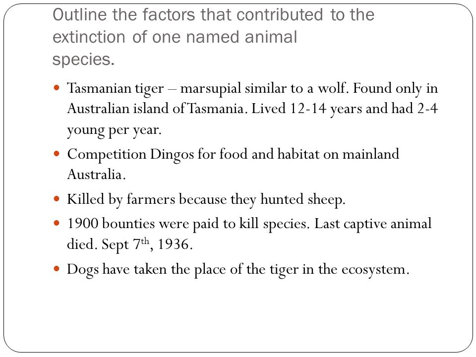 Outline the factors that contributed to the extinction of one named animal species.