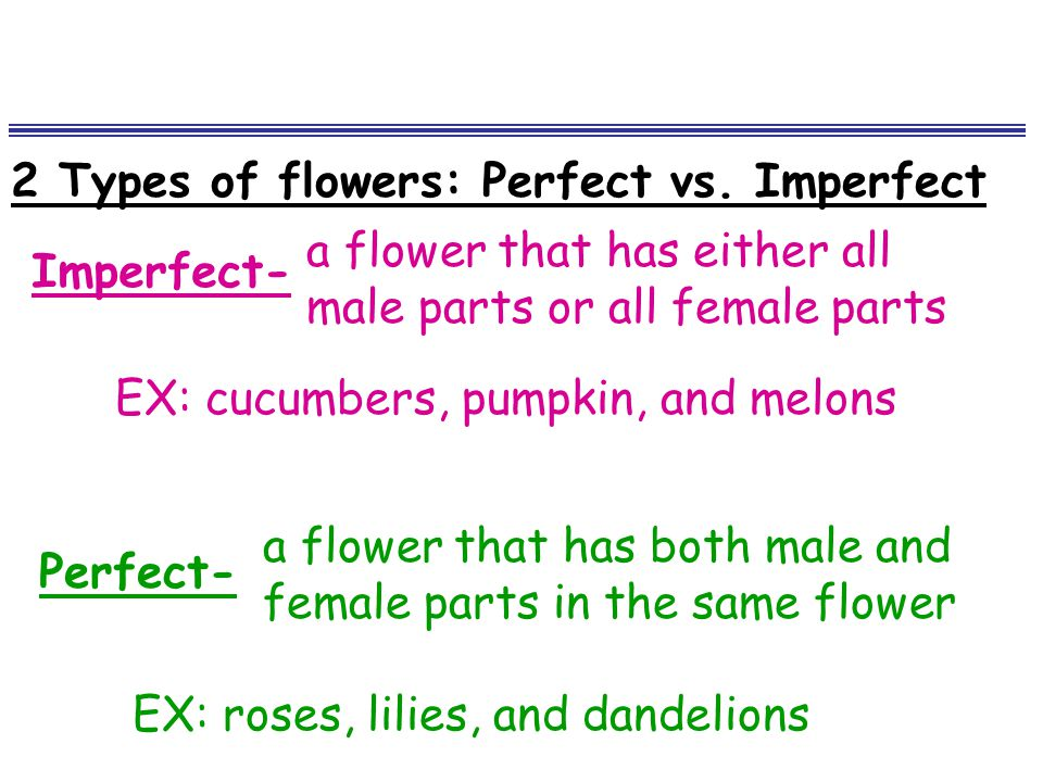 2 Types of flowers: Perfect vs. Imperfect