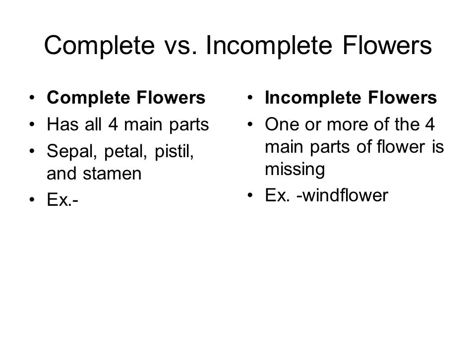 Complete vs. Incomplete Flowers